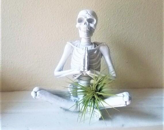 Prayer pose statue, meditating yoga skeleton, desktop skeleton, air plant holder, gift for yoga instructor, Halloween decor, skull gift