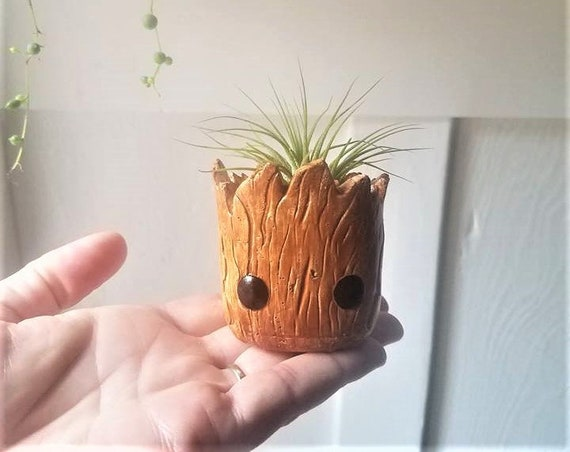 Groot inspired planter gift set, baby Groot, Rocket the raccoon, air plant gift, dorm decor, back to school gift