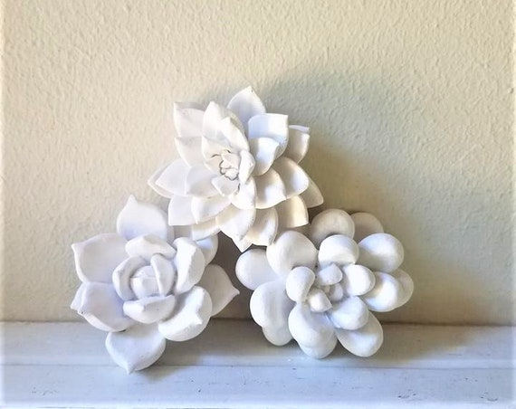 Succulent wall sculptures, wall hanging succulents, modern floral decor, dorm room decoration