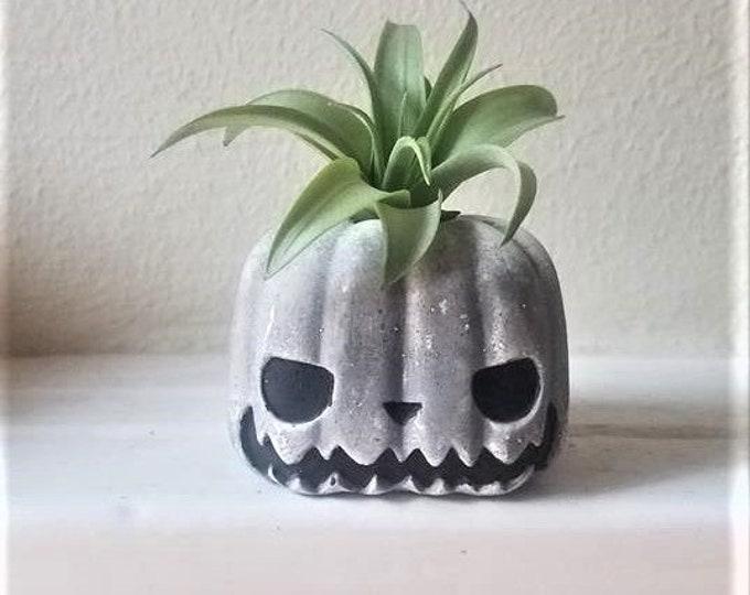 Nightmare before Christmas gift, pumpkin Jack, jack skellington, air plant gift set, jack o lantern, Halloween gift, Halloween desk planter