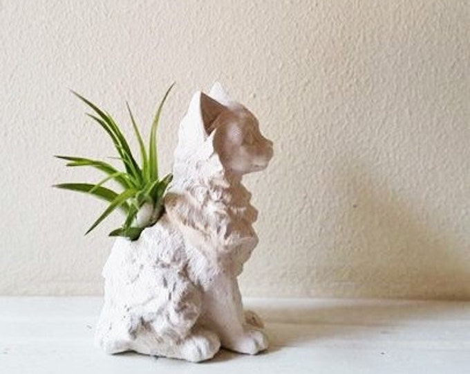 Long hair cat air plant holder, cat memorial statue, crazy cat lady gift, kitty gift, gift for animal lover