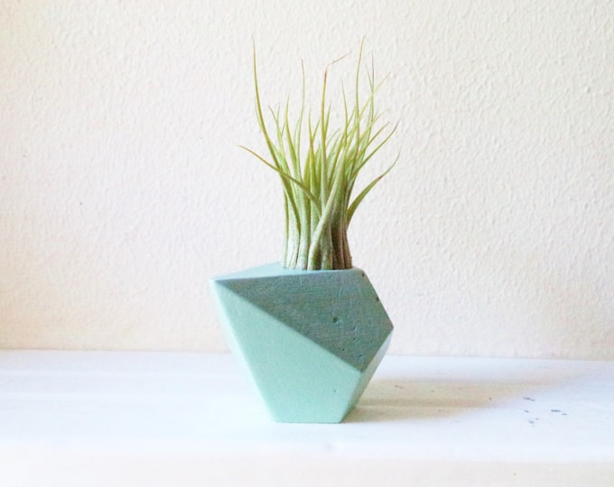 Green wedding favors, sustainable favors, earth friendly, Geometric planter, air plant holder, teardrop planter, mini planter, desk decor