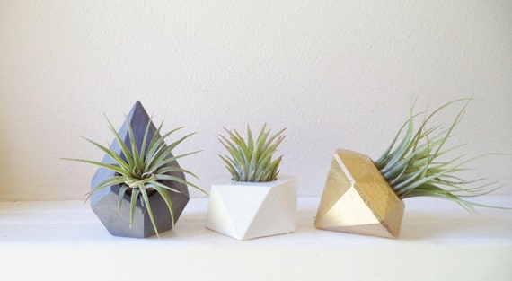Mini air plant wedding favors, small air plant holders, modern floral, desktop planter, geometric planter gift set
