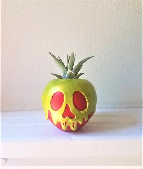 Poison apple air plant holder, desk planter, villains, dorm room decor, just one bite