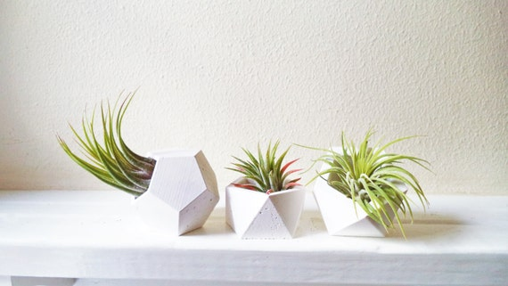 Geometric planters, small air plant holder set, modern floral, geometric planter gift set