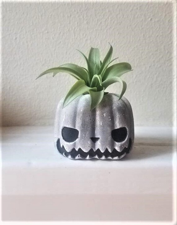 Jack Skellington inspired air plant holder, pumpkin Jack, air plant gift set, jackolantern, Halloween