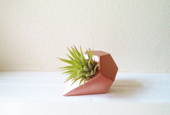 Geometric airplant holder, teardrop planter, air plant holder, small desk planter, copper home accent, plant favors