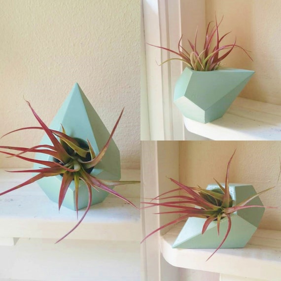 Geometric air plant holder, planter gift set, desk decor, with air plant