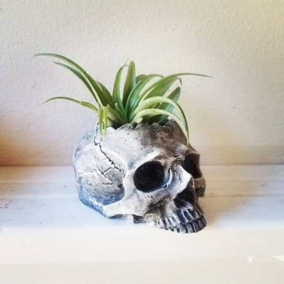 Half skull planter, jawless skull, skull candle holder, small desk skull decor, skull gift, skull dish