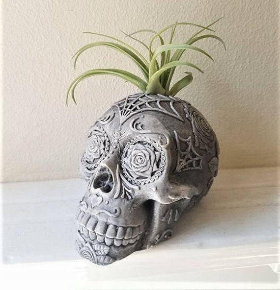 Day of the Dead skull, Sugar skull planter, air plant holder,  Dia De Los Muertos, skull book end