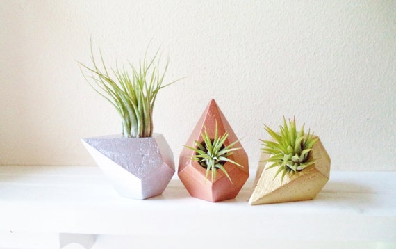 Geometric air plant holder trio, planter gift set, office co-worker gifts, metallic home accents, teardrop planter