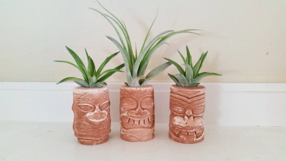 Tiki totem air plant holders, Hawaiian wedding favors, Island style, Tahitian, Hawaiian decor, Polynesian