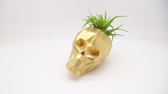 Geometric skull planter, mini air plant holder, mini skull planter