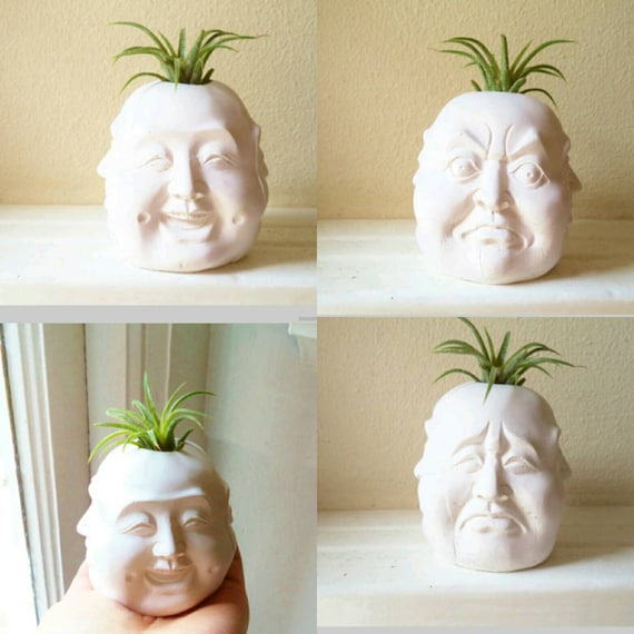 Buddha planter, Four faces of Buddha, air plant holder, Buddha gift