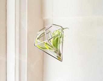 Diamond geometric hanging plant holder, with air plant, wire diamond geometric ornaments, copper, silver