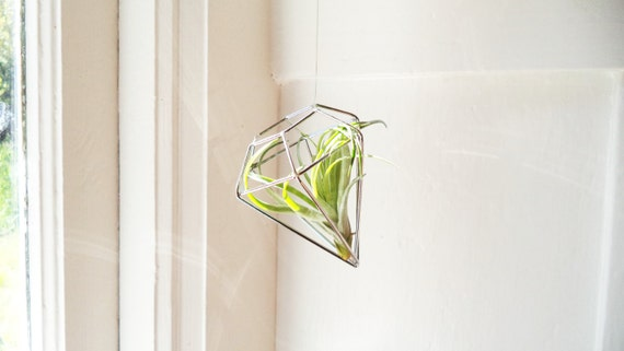 Geometric hanging air plant holder, with air plant, wire diamond geometric ornaments, copper, silver