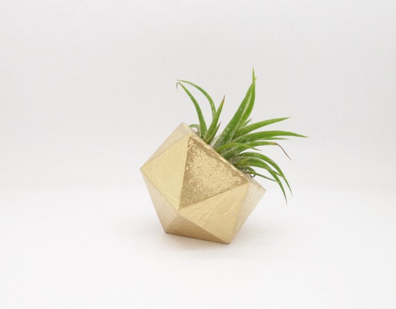 Gold geometric air plant holder, modern mini planter
