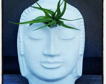 Buddha wall planter, air plant holder, wall planter with plant, eye of the Buddha, 3rd eye, third eye