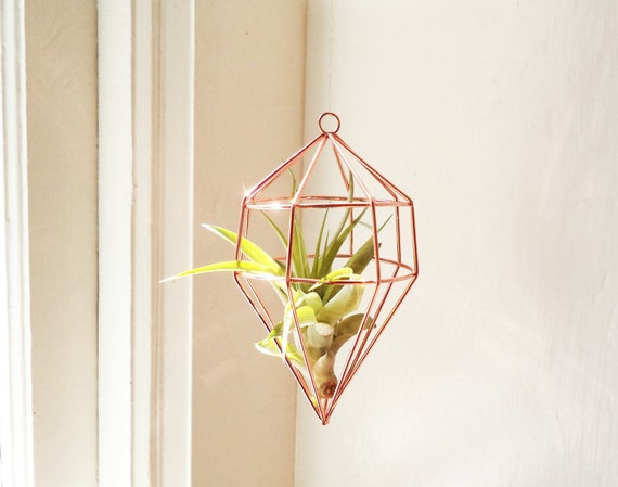 Geometric hanging air plant holder, hanging air planter holder with plant, copper geometric plant holder, silver