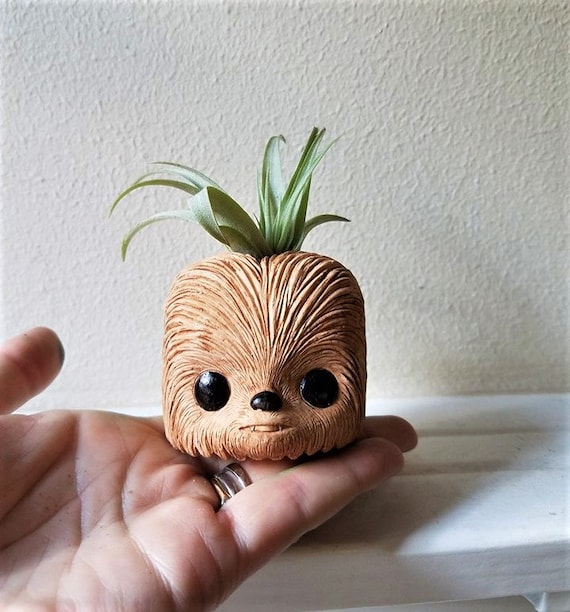 Chewbacca gift, cute air plant holder, star wars gift, air plant gift set, gift for him, stocking stuffer,bff gift, star wars wedding