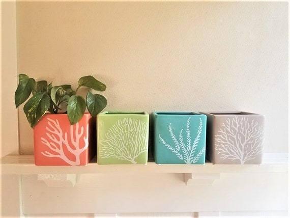 Tropical colors, beach themed planters, succulent pots, square planters, set of planters