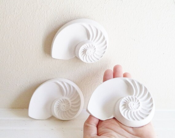 Sea shell wall sculptures, nautilus shells, nautical decor, sea shells, beach house decor accent, Spring, Summer