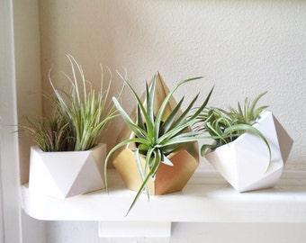 Geometric planters  gift set, air plant holders, teardrop, icosahedron