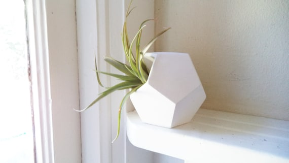 Geometric planter, air plant gift set, Dodecahedron, desk accessory, air plant holder, planters for small spaces