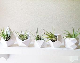 Geometric planters, set of air plant holders, book shelf mini planter, mini desk planter