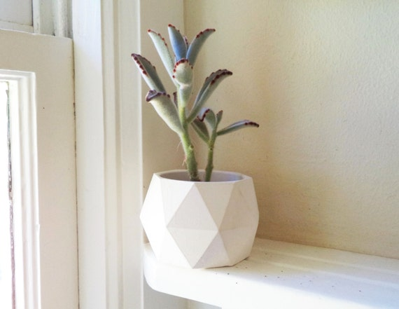 Geometric succulent planter, desk accessory, dorm decor, back to school gift