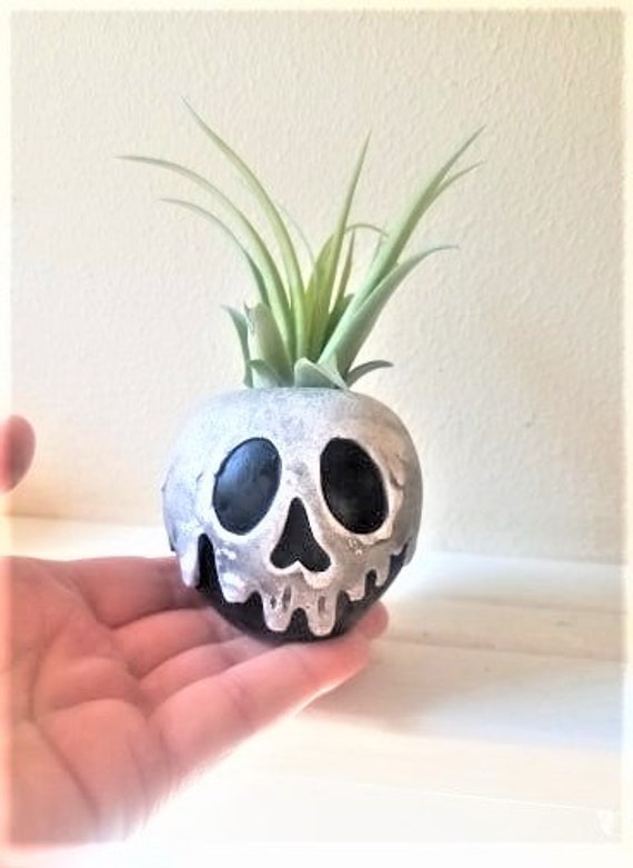 Poison apple planter, poison apple gift, air plant holder, desk planter, Snow White gift, just one bite, stocking stuffer