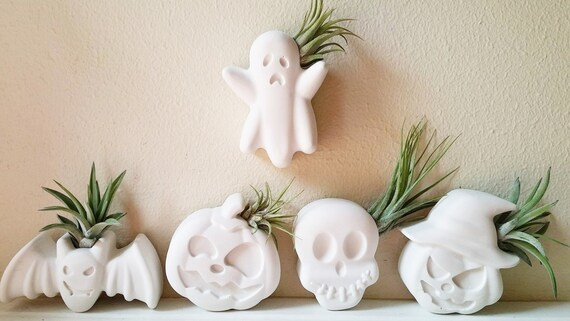 Halloween mini planters, spooky air plant holders, wall planter, ghost, bat, witch, pumpkin