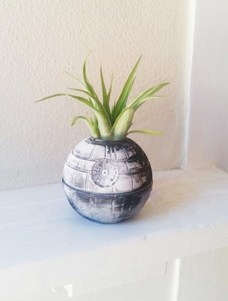Death Star planter with plant Valentines day star wars gift image 0
