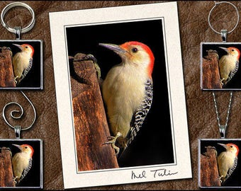 Woodpecker Matched Set, Woodpecker Pendant, Woodpecker Key Ring, Woodpecker Ornament, Woodpecker Wine Charm, Greeting Cards Handmade - GP78