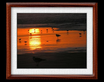 Sunrise Beach Print - 8x10 or 11x14 Beach Photograph - Nature Photograph - Nature Print - Nature Art - (P24)