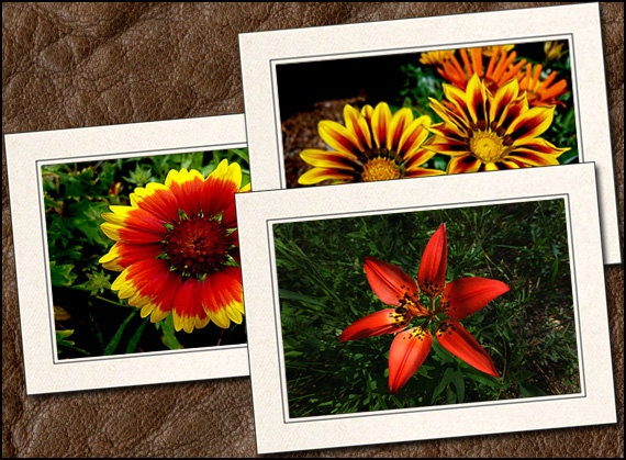 5x7 Nature Blank Note Cards Handmade GP428 3 Flower Photo Note Cards With Envelopes Nature Flower Photo Greeting Cards Handmade Set