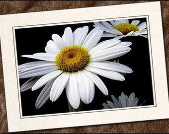 3 Daisy Photo Greeting Cards Handmade Set, Photo Note Cards Handmade Set, Blank Greeting Cards Set, Greeting Cards Blank, 5x7 Card, (IN330)