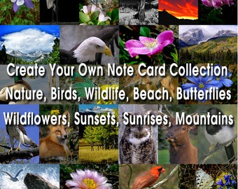 3 Nature Photo Greeting Cards Handmade - Blank Photo Cards With Envelopes - Nature Photo Note Cards Handmade - 5x7 Note Cards Set - (MYO)