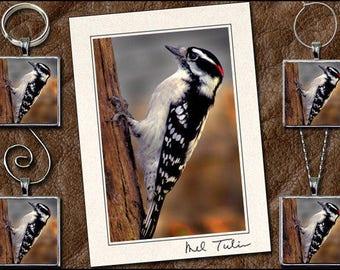 Woodpecker Matched Set - Woodpecker Pendant, Woodpecker Key Ring, Woodpecker Ornament, Woodpecker Wine Charm - Photo Greeting Card - (GP149)
