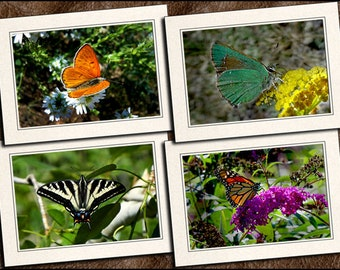 4 Butterfly Photo Note Cards Handmade Set - 5x7 Nature Blank Note Cards With Envelopes - Butterfly Photo Greeting Cards Handmade - (GP460)