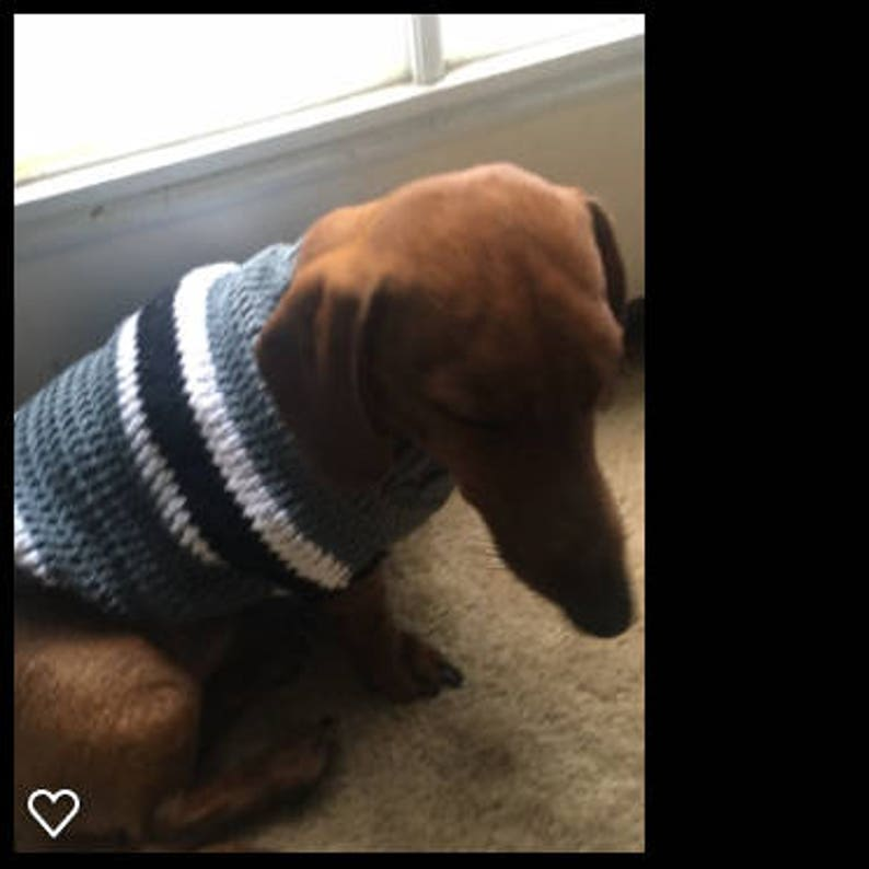new product 25e70 81acd Raiders Dachshund Wear Sweater - Dog Sweater