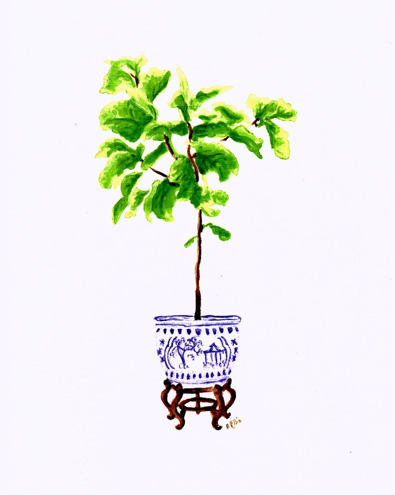 Fiddle Leaf Fig Tree in Chinoiserie Planter Watercolor Art image 0
