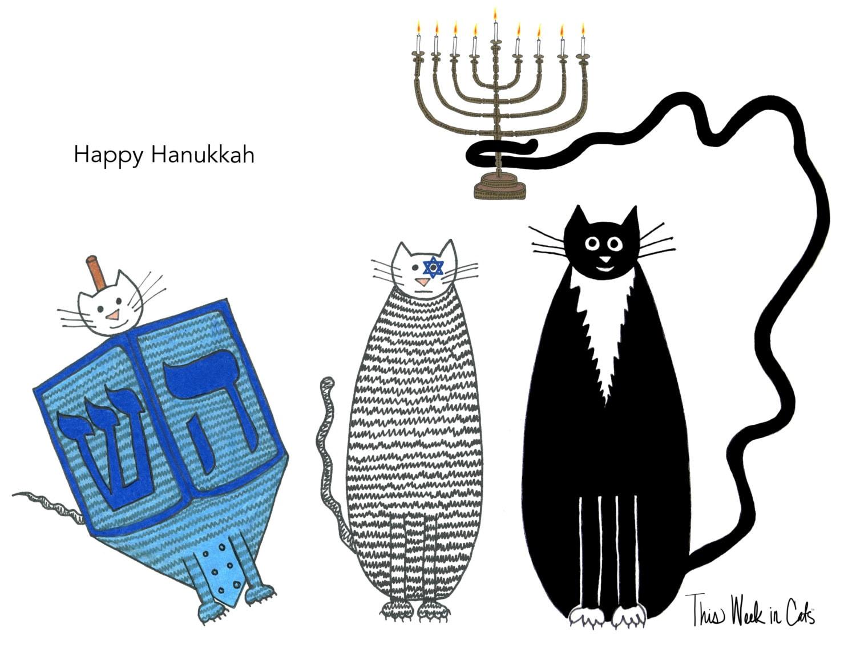 Cat Card Happy Hanukkah Funny Cats Three Cats Dreidel Etsy