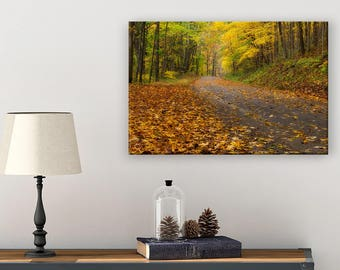 Ohio Art - Nature Wall Art - Photography Wall Art - Enchanted Forest - Hocking Hills - Fall Leaves - Autumn Art - Fall Art