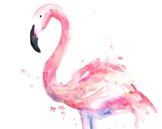 Flamingo Watercolor
