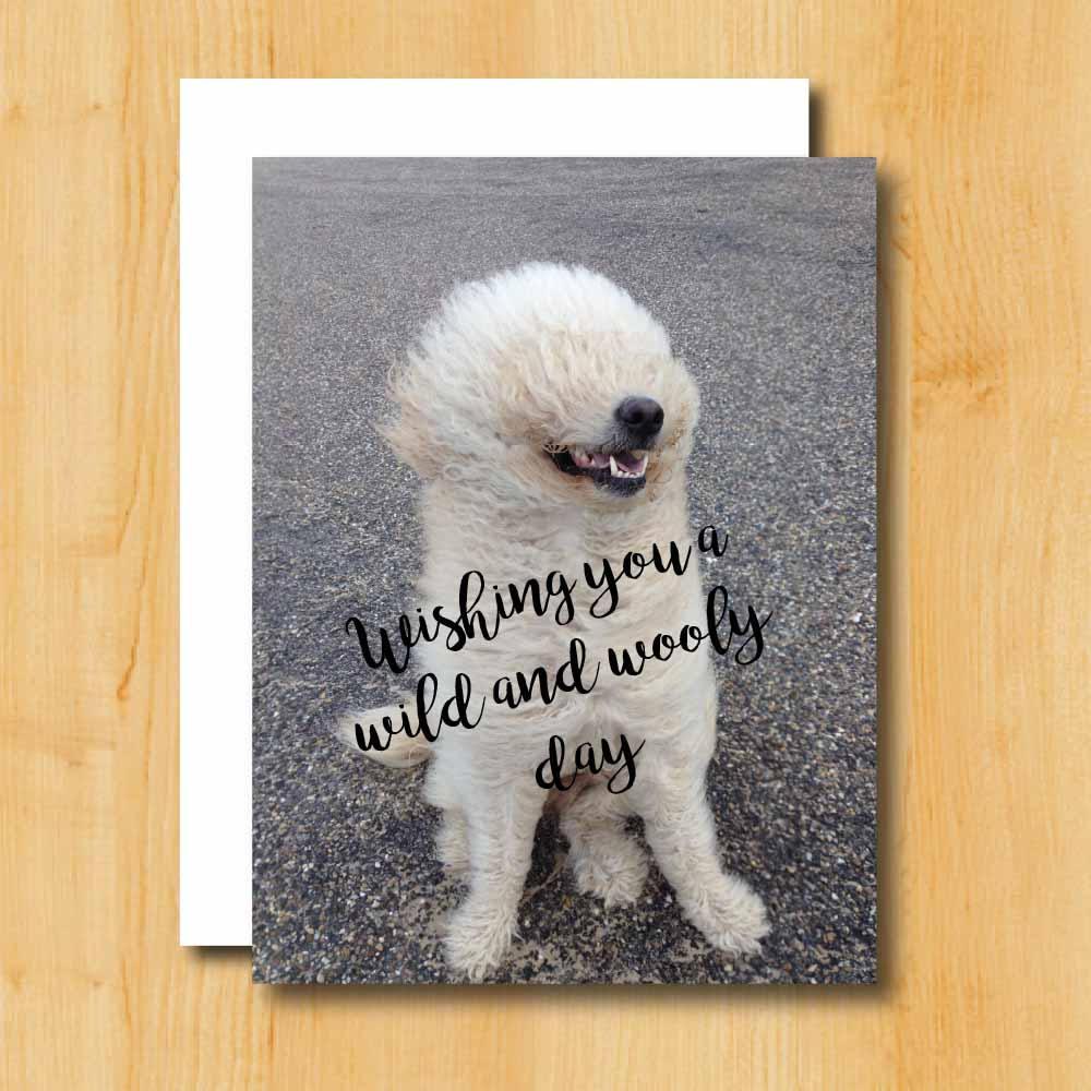 Birthday Card Dog Birthday Card Humorous Birthday Card