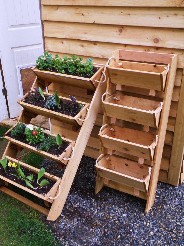 planter succulent herbs garden sculpture cedar raised bed   Etsy