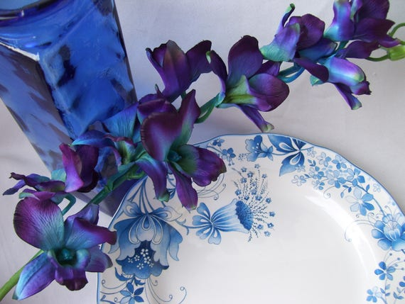 Special order 4 stems vibrant blue ca dendrobium orchids silk etsy image 0 mightylinksfo