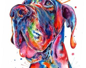 Colorful Great Dane Watercolor - Print of my original artwork (FREE Shipping)