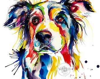 Colorful Border Collie Art Print - Print of Original Watercolor Painting (FREE Shipping)